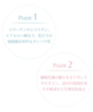beginers_banner_02.jpg