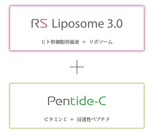 rs_liposome_3.0_complex_01のコピー.png