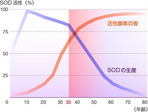 図31.jpg