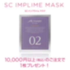 sc_imprime_mask.jpg