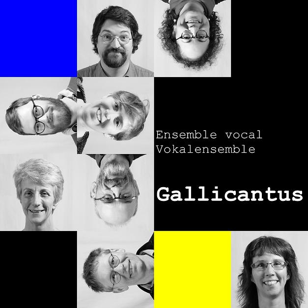 Photo_mosaïque_galli_2019_11_30_avec_txt