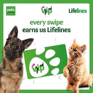 VIP-Lifelines-social-post-3.jpg