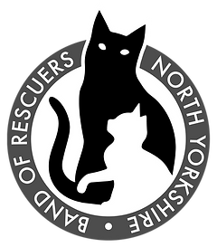 Rescuers Logo.png