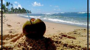 Coconut!!