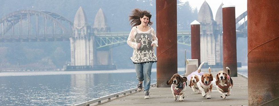 Kyla with Rescued American Bassets