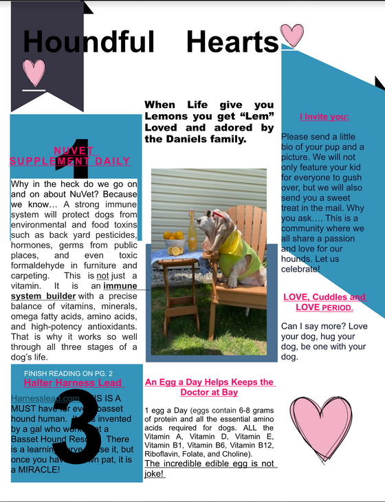 Houndful Hearts Newsletter