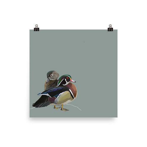 Wood Ducks - Square Bird Art Print