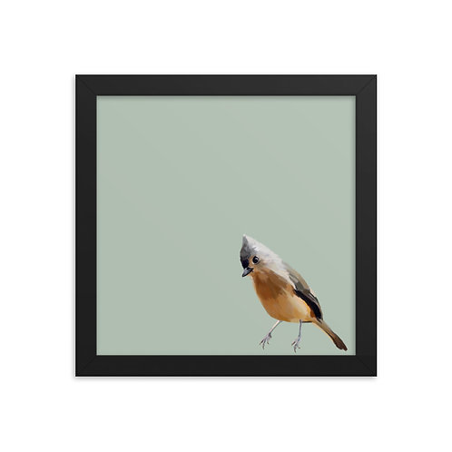 Tufted Titmouse - Framed Bird Art Print