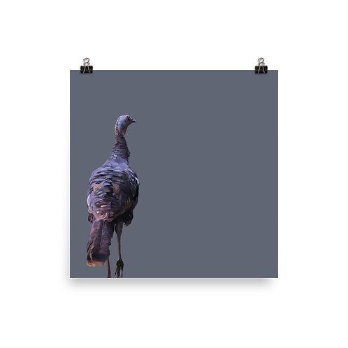 Wild turkey - Square Bird Art Print