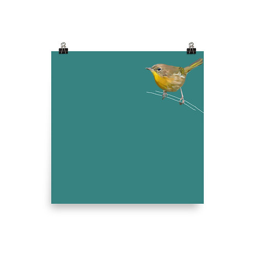 Common Yellowthroat - Square Bird Art Print