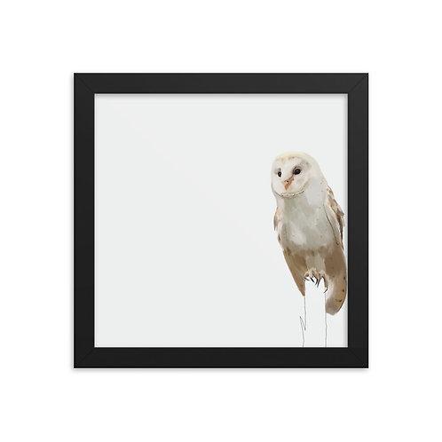 Barn Owl Framed Square Art Print