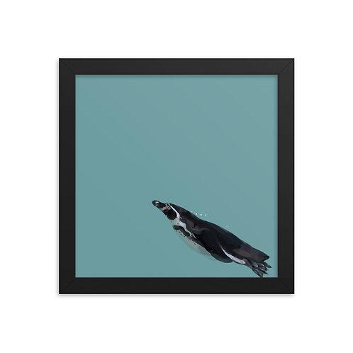 African Penguin - Framed Bird Art Print