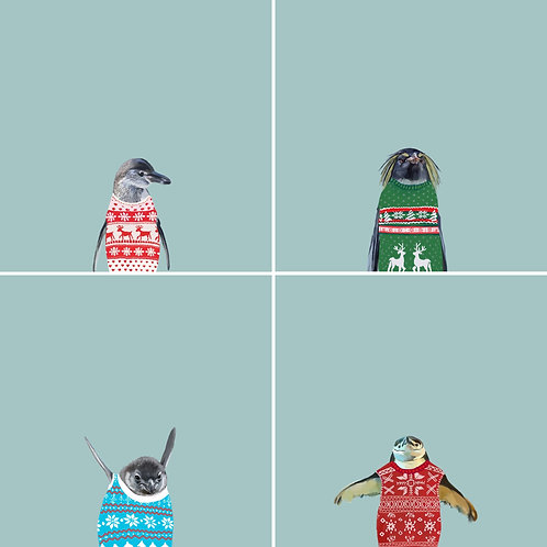 Penguins in Sweaters Holiday Cards Pack of 4