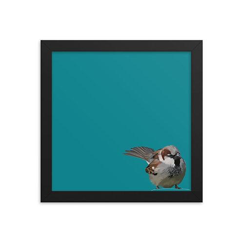 House sparrow - Framed Bird Art Print