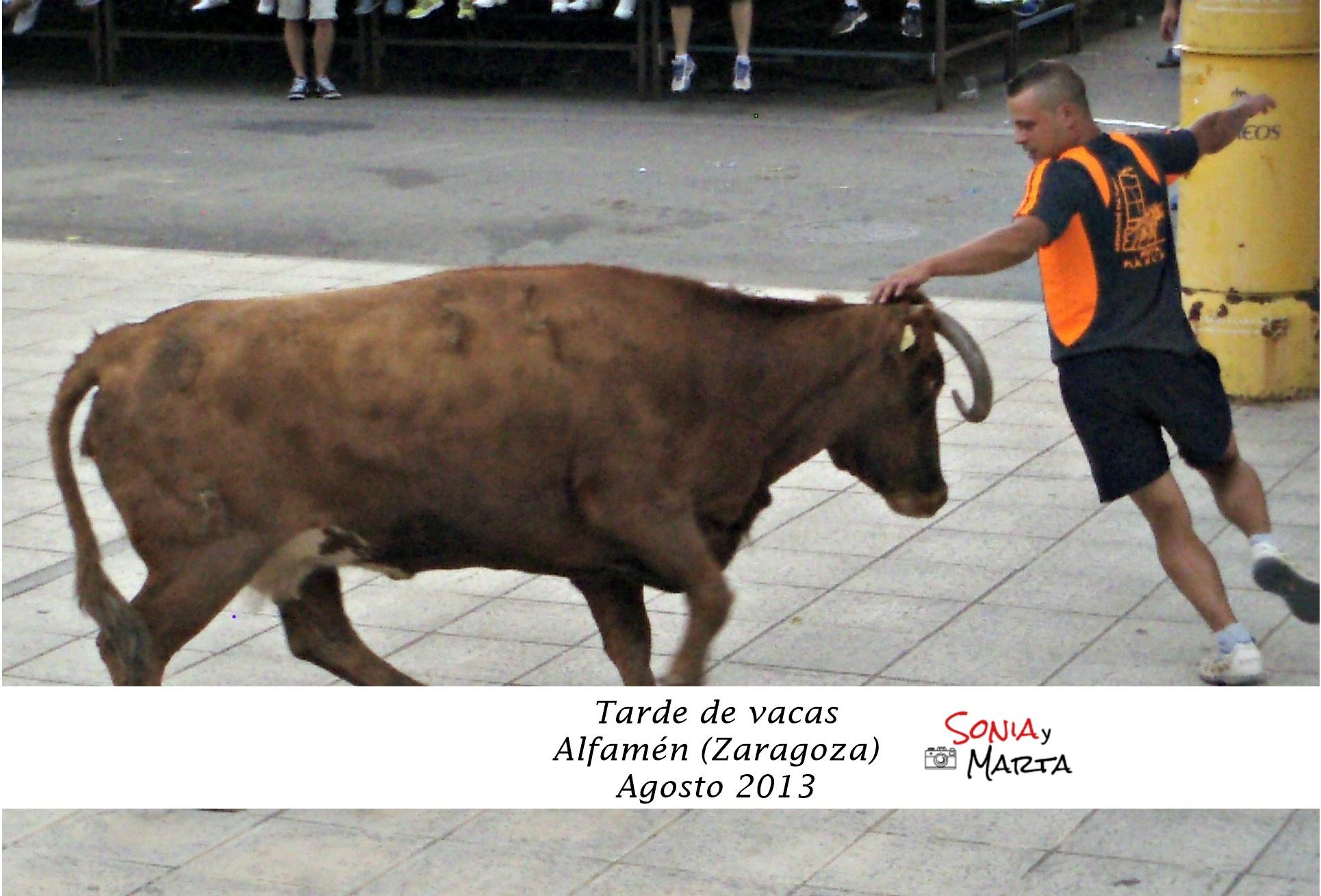 ALFAMEN - ZARAGOZA AGOSTO 2013 (1)