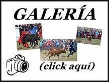 1.calatorao ABRIL fotos 2018.jpg