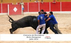 CONCURSO ROSCA RICLA JULIO 2014 (1)