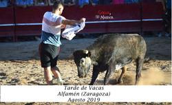 ALFAMEN AGOSTO (3)