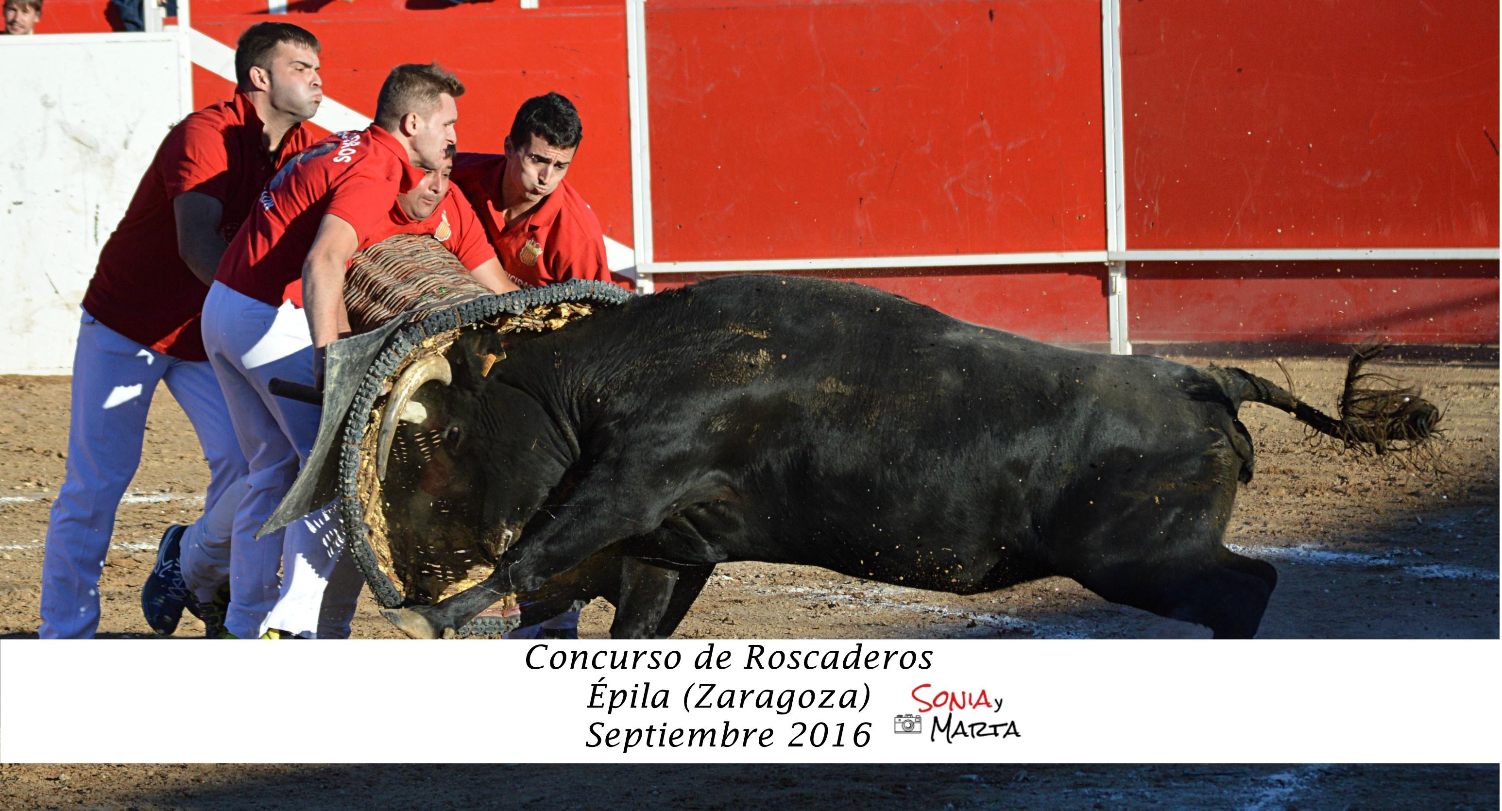 CONC DE ROSCA SEPTIEMBRE EPILA 2016 (2).
