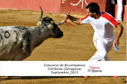 CONCURSO_DE_RECORTADORES_CARIÑENA_(ZARA