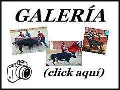 6. tarde de vacas Soria Octubre 2018.jpg