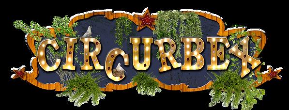 Logo circurbex BD.png