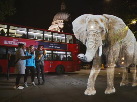 WWF - STOP WILDLIFE TRAFFICKING