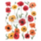 Poppy transfer - 655350644802.jpg