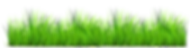 grass-clipart-1.png