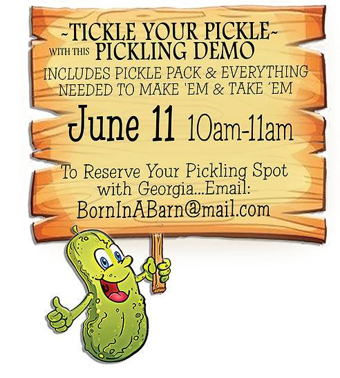 Pickle-template.jpg