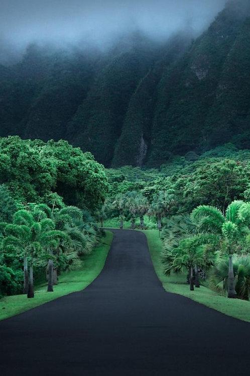 Hawaii Security Deposit
