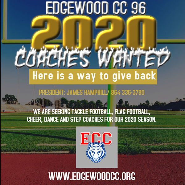 Copy of GA LIONS 2020 COACHES WANTED FLY