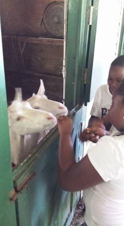 ECC CAMP GOES TO EMERALD FARMS