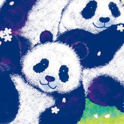 パンダの花見
