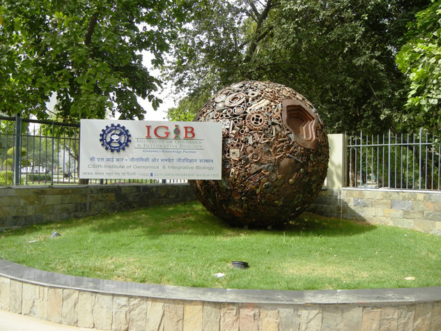 IGIB: INSTITUTE OF GENOMICS & INTERATIVE BIOLOGY, Delhi, 2012