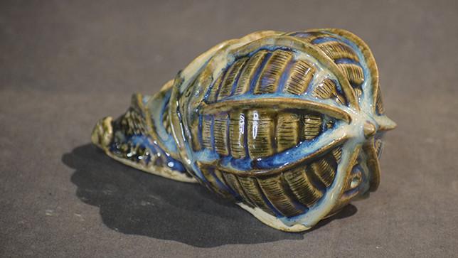 Shells 5