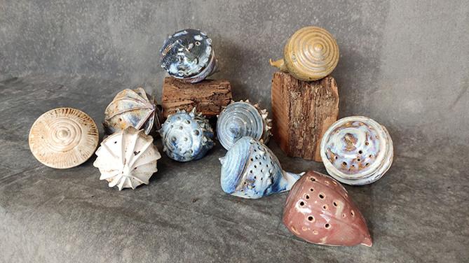 Shells 10