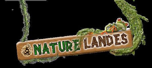 nature landes.png