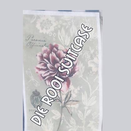 Wild Peony Silk Paper