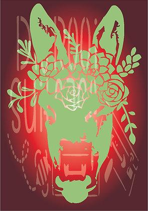 Succulent Donkey