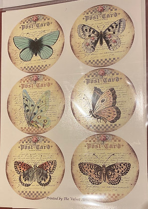 Butterflies A4