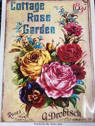 Cottage Rose Garden 1897