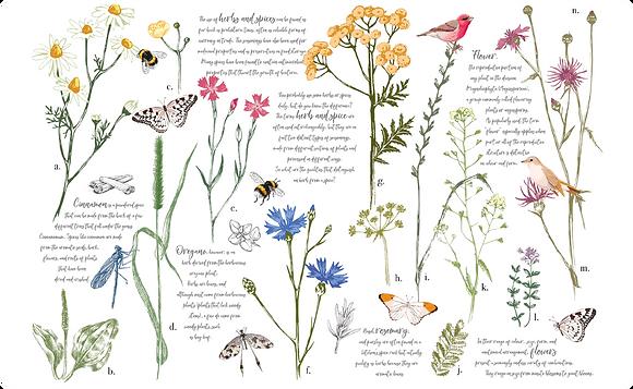 "Herbs & Spices - 88x57cm (35x22"") Landscape (Cuttable Design)"