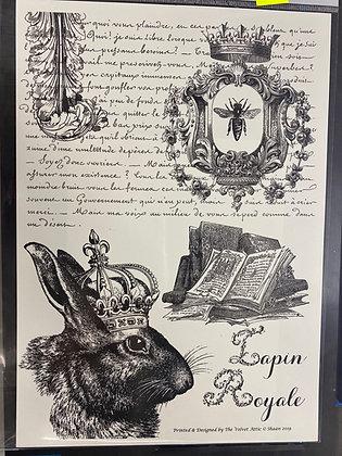 Lapin Royale