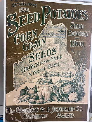 Seed Potatoes A3