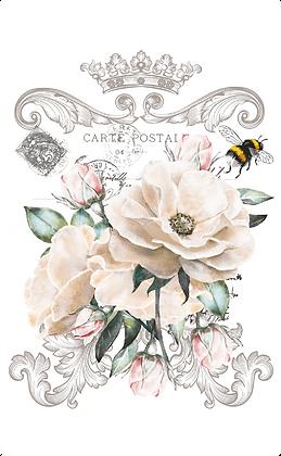 """Fleur Frisee - 28x38cm (11x15"""") Portrait (Solid Design)"""