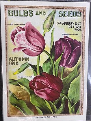 Tulips Autumn 1912