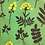 Thumbnail: Beeswax Food Wraps  - 3 Pack