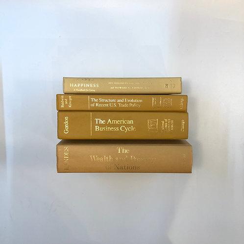 カラー洋書 ベージュ/イエロー 4冊セット(M312)