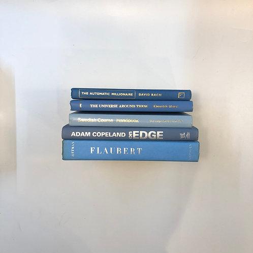 カラー洋書 ブルー 5冊セット(M313)